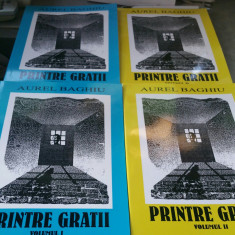 AUREL BAGHIU PRINTRE GRATII 2 VOL 2006 232+200P DEȚINUT POLITIC MIȘCAREA LEGIONA