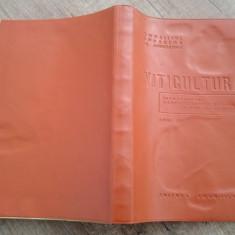Viticultura, anul III/ Invatamantul agrozootehnic de masa, 1965