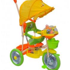 Tricicleta pentru copii DHS 107A-2G - Tricicleta copii
