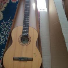 Chitara clasica Ibanez Reghin
