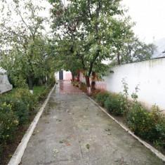 Vand casa batraneasca+teren intravilan 995 mp zona Mogosoaia - Casa de vanzare, 900 mp, Numar camere: 2