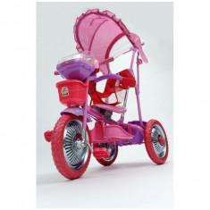 Tricicleta pentru copii DHS 107A-2R - Tricicleta copii