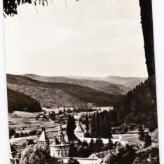 A.9 RPR CP necirculata manastirea Putna jud Suceava ctitoria lui Stefan cel Mare - Carte Postala Bucovina dupa 1918, Fotografie