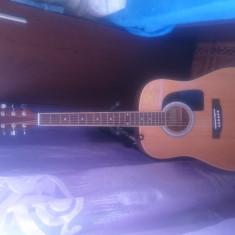 Vand Chitara acustica Aria