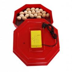 Incubator CLEO5 - 60 oua - Incubator oua