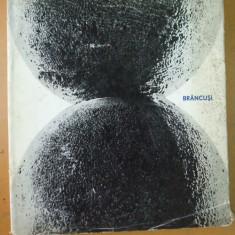 Brancusi Constantin Bucuresti 1966 M. Deac 126 reproduceri - Carte sculptura