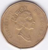 Moneda Canada 1 Dolar 1991 - KM#186 VF