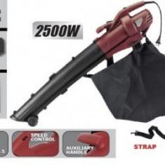 Aspirator frunze 2500W, sac colector 45L, Raider RD-EBV01