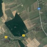 5000mp padure (fag si carpen) - Teren de vanzare, Teren extravilan