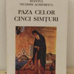 PAZA CELOR CINCI SIMTURI -PAISIE AGHIORITUL - Carti ortodoxe