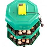 Incubator etajat cu dispozitiv de intoarcere oua si termometru CLEO5x2DT - Incubator oua