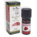 Ulei esential pur de Trandafir (5% diluat in ulei de Jojoba) 5 ml - Crema de corp