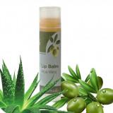 Balsam de buze cu aloe vera 60 ml Rizes - Gloss buze