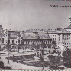Bnk cp Oradea - Vedere din Piata Victoriei - uzata - Carte Postala Crisana dupa 1918, Circulata, Printata