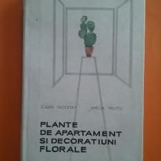 Plante de apartament si decoratiuni florale - E. Sadofsky / R2P3F - Carte amenajari interioare