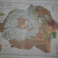 ROMANIA MARE, LOT DOUA HARTI INTERBELICE : HARTA SOLURILOR+ HARTA VEGETATIEI - Harta Romaniei