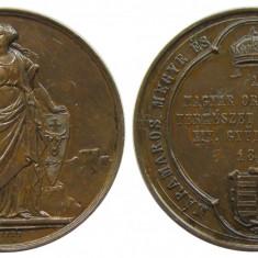 X780 ROMANIA UNGARIA 1876 INTALNIREA MEDICILOR MAGHIARI IN SIGHETUL MARMATIEI - Medalii Romania, An: 1989
