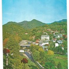 @carte postala(ilustrata)-VALCEA-Olanesti - Carte Postala Dobrogea dupa 1918, Circulata, Printata