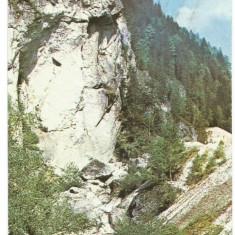 @carte postala(ilustrata)-VALCEA -Voineasa - Carte Postala Dobrogea dupa 1918, Necirculata, Printata