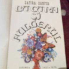 BUCURA SI FULGERUL - Elena Zafira Zanfir - Carte de povesti