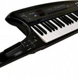 ROLAND AX SYNTH keyboard - Orga