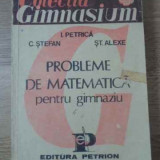 Probleme De Matematica Pentru Gimnaziu - I. Petrica C. Stefan St. Alexe, 393923 - Carte Matematica