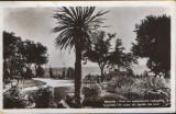 Carte postala (foto) Bulgaria,circ.1959 -Varna - Un colt ala Gradinii de la mare, Circulata, Fotografie