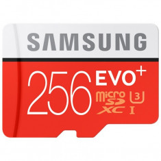 Card de memorie Samsung Evo Plus Micro SDXC 256 GB Clasa 10 UHS-1 U1 Adaptor SD