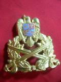 Insigna Sapca  de Ofiter dupa '90 , metal aurit si email , L= 6,5 cm