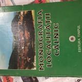 Monografia localității Câlnic-Vasile C.Ioniță - Carte Monografie