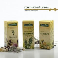 Tratament naturist - Colesteroloza la tineri (pachet) foto