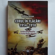 CERUL IN FLACARI, AVIATIA 1914-1918 IN PRIMUL RAZBOI MONDIAL, BUCURESTI, 2014 - Istorie
