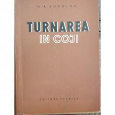 TURNAREA IN COJI - N.A. SOKOLOV
