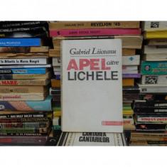APEL CATRE LICHELE, GABRIEL LIICEANU - Filosofie