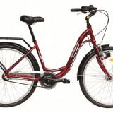 Bicicleta DHS Citadinne 2636 (2016) Culoare Maro/Alb/Negru 480mmPB Cod:21626364849 - Bicicleta de oras