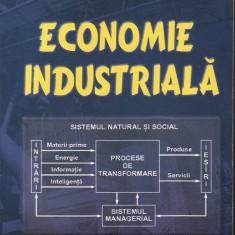 Ion Plumb - Economie industriala - 32473 - Carte Economie Politica