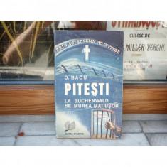 Pitesti - La Buchenwald se murea mai usor, D. Bacu, 1991 - Accesoriu Protectie Foto