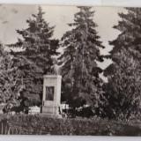 A62 RPR CP circulata 1970 Avrig jud Sibiu vedere din parc, statuia Gherghe Lazar - Carte Postala Transilvania dupa 1918, Fotografie