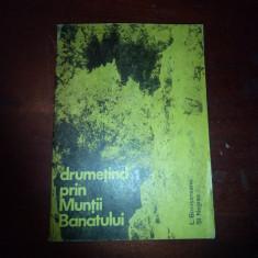 LAZAR BOTOSANEANU, STEFAN NEGREA - DRUMETIND PRIN MUNTII BANATULUI, Alta editura