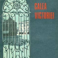 Cezar Petrescu - Calea Victoriei - 28846 - Roman