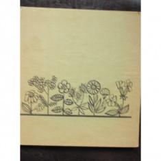 PLANTE MEDICINALE AROMATICE - G. RACZ - Carte Medicina alternativa