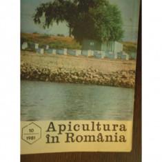 REVISTA APICULTURA IN ROMANIA NR.10/1981