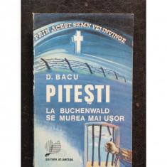 PITESTI LA BUCHENWALD SE MUREA MAI USOR, D. Bacu, 1991 - Accesoriu Protectie Foto