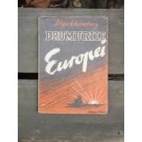 DRUMURILE EUROPEI - ILYA EHRENBURG