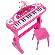 Pian cu microfon si scaun roz, Simba