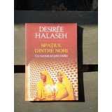 SPATIUL DINTRE NORI - DESIREE HALASEH - Carte de calatorie