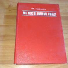 MIC ATLAS DE ANATOMIA OMULUI