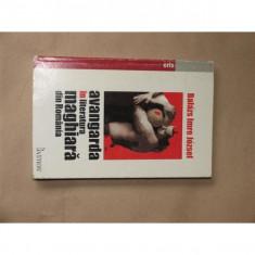 Avangarda in literatura maghiara din Romania - Carte Monografie