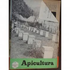 REVISTA APICULTURA NR.9/1974