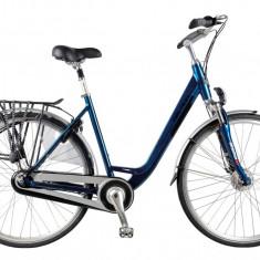 Bicicleta Devron 2822 Marton marime 530 mmPB Cod:215822DH5338 - Bicicleta de oras Devron, 13 inch, Albastru